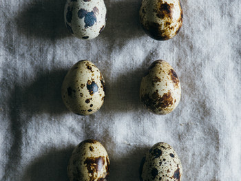 Eggs and Health