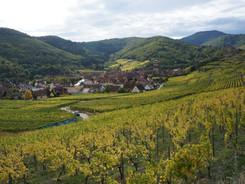 L'Alsace, un incontournable du cyclotourisme
