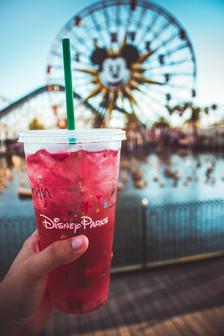California Adventure Park at Disneyland Reso