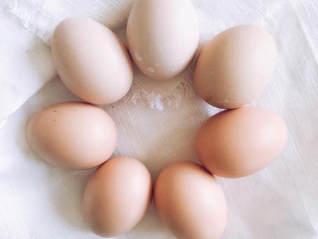 Yerel gıda tercih etmek için 8 neden