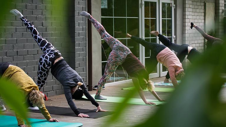 Sunday Yoga - Jardin du Louvre