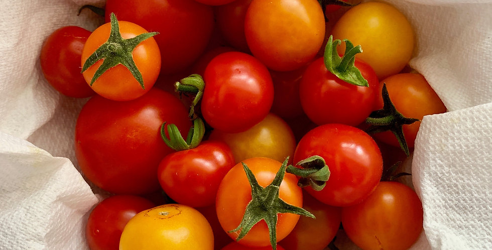 Cherry Tomatoes- mixed variety 4-pack
