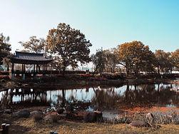 Image by Ren zo