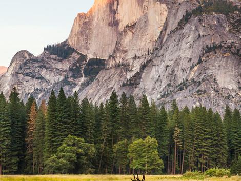 Los lugares más bonitos que ver en California