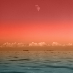 Nouvelle lune en Bélier ♈️