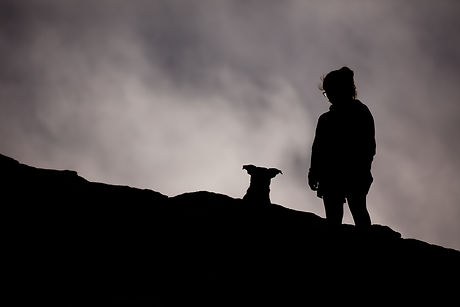 silhouette of person and dog looking away