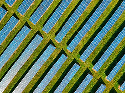 Transitioning to a Low Carbon Future
