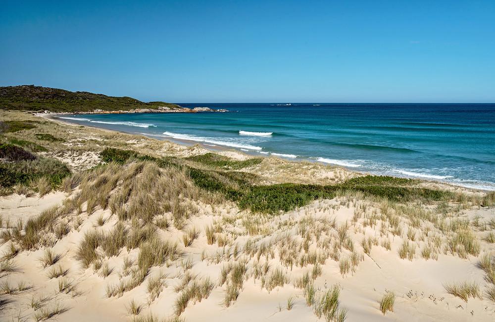 Tasmanian Beaches