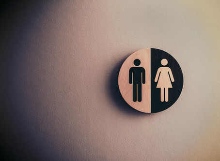 """""""Gender Swaying Diet: Can The Foods You Eat Influence The Sex of Your Baby?"""""""