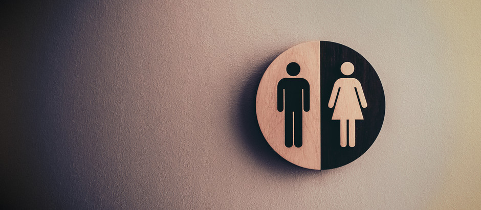 Where did gender roles come from?