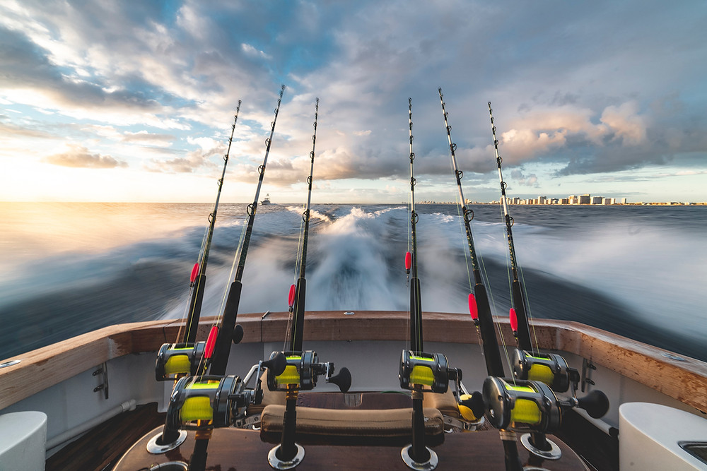Fishing Charters Near Me