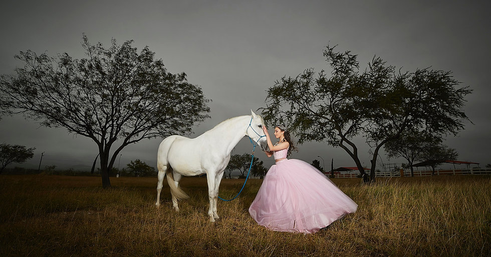 A Royal Photo theme with a Horse and a Pink Gown Lady.  A Pre wedding Photo theme