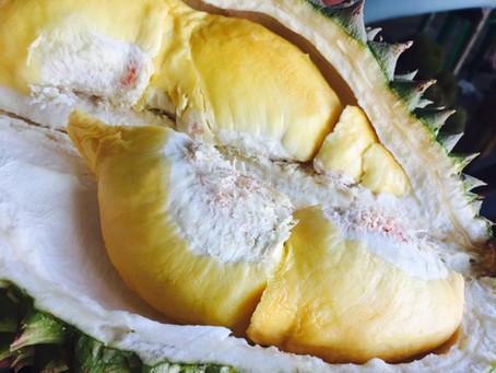 4 Manfaat Durian Untuk Kesehatan