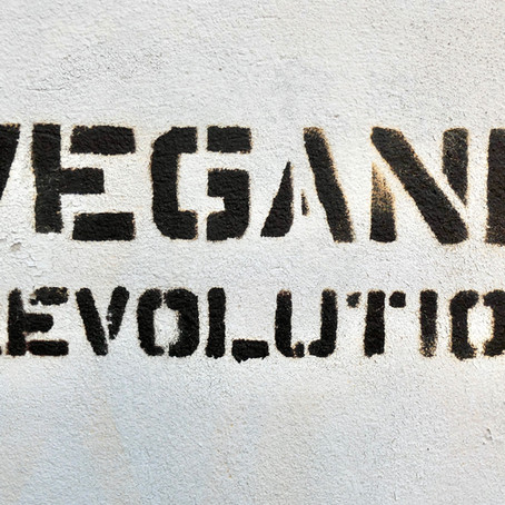 Guide To Becoming A Vegan