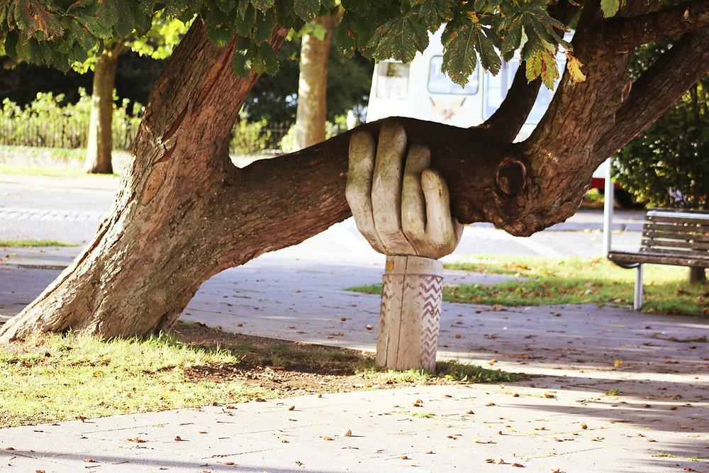 a sculpture of a large hand holding a tree trunk that has grown horizontally and needs supporting, the tree is in a park next to a path and a bench
