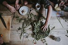 Sorting Natural Ingredients