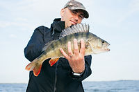 Image by www.raubfisch24.de