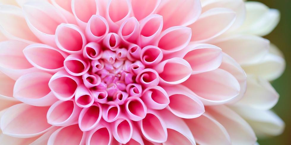 Blossom into Your True Self