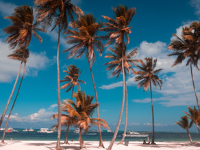 Punta Cana Itinerary - Tours and Activities