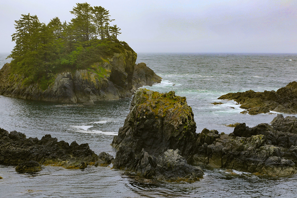 hiking the wild pacific trail is one of the best things to do in tofino and ucluelet