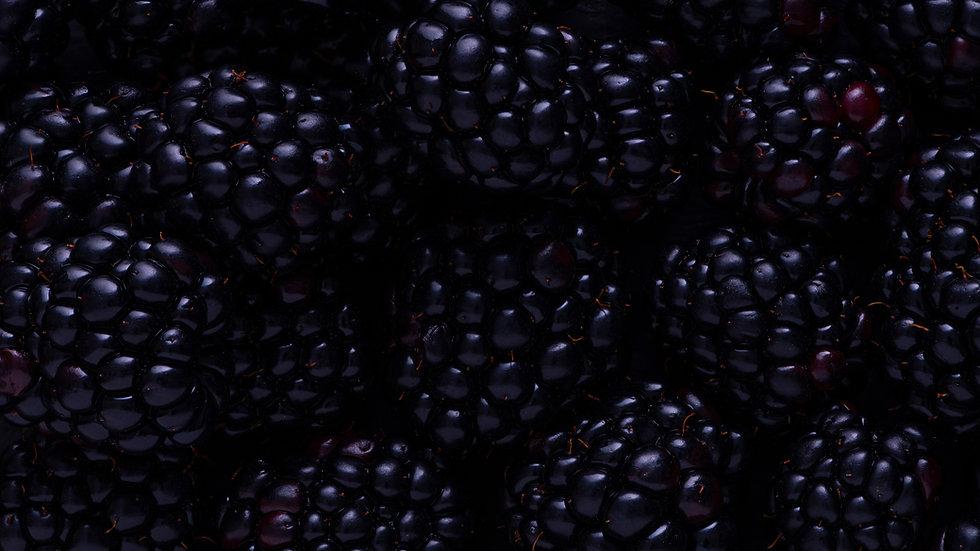 10lb bulk Blackberries
