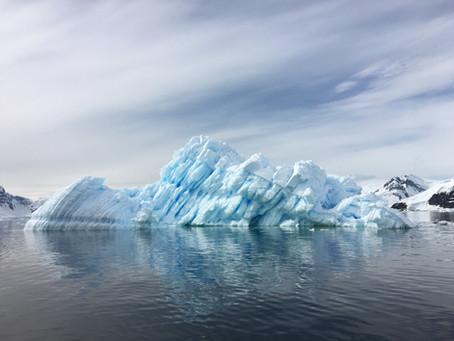 Antarctic Janus