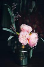 Image de zixuan Fu