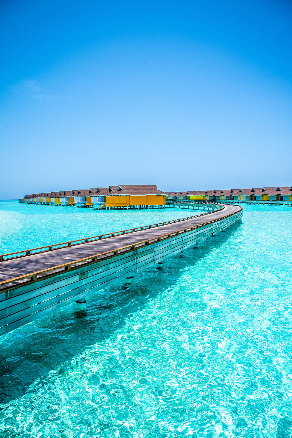 Image by Rayyu Maldives photographer
