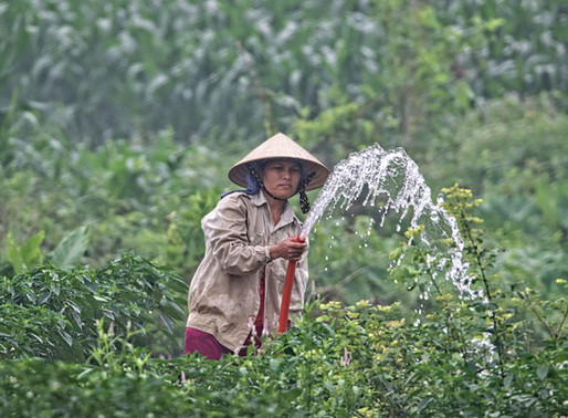 Siaran Pers | Upaya Mendorong Investasi di Sektor Pertanian Masih Perlu Ditingkatkan
