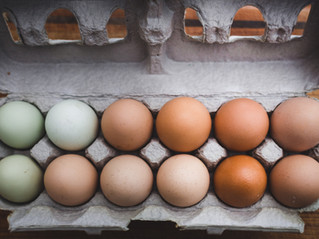 The best eggs for a mold-free and mycotoxin-free diet