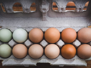 A Focus on Egg Farmers & Preparing for Distribution