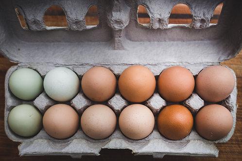 Fresh Egg Subscription