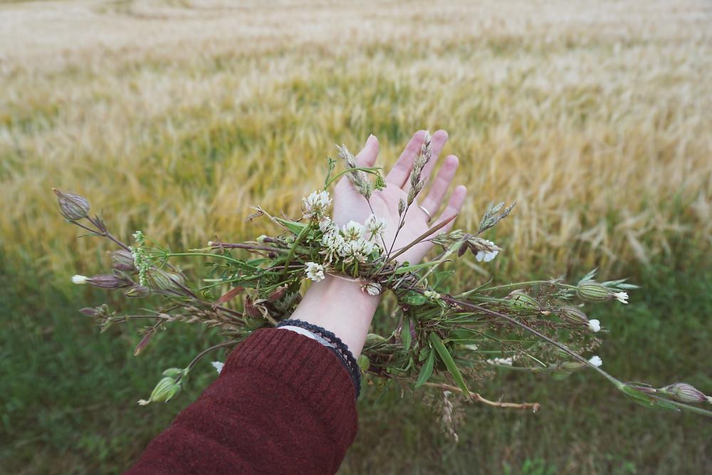 Koti Lifestyle   herb field, flower bracelet