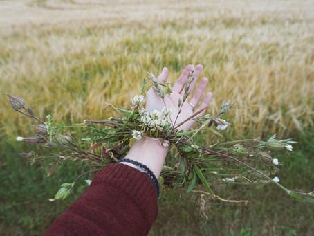 Frantsila - Finnish pioneer in organic farming and holistic beauty