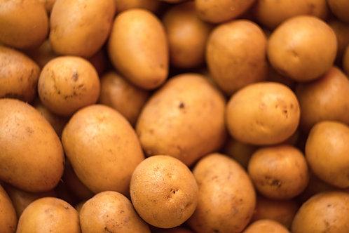 Yukon Potatoes 1 lb