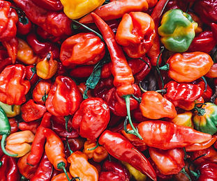 Mexican chillis