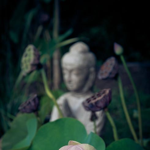 Mantra Recitation Meditation - Mantra of Avalokiteśvara (Long Version)