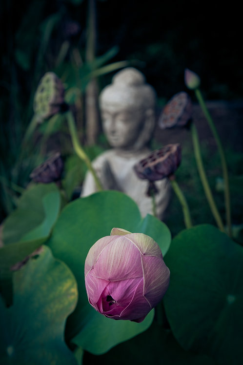 Empowerment Reiki - Awaken your Inner Power & Sacred Self!