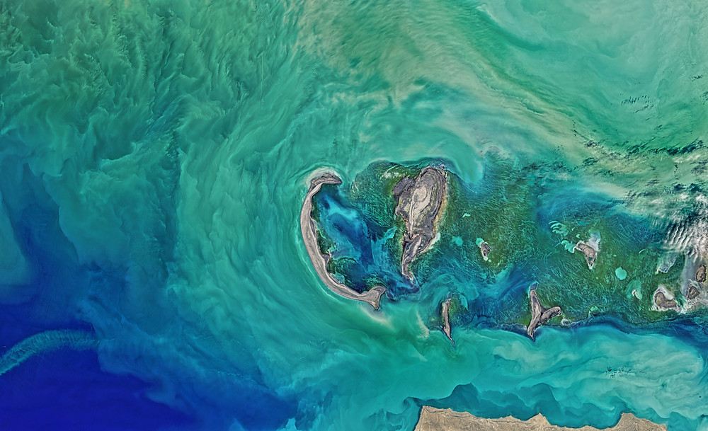 aerial view of water and earth