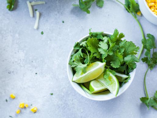 It's time to plant cilantro, again