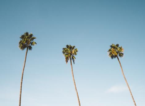 10 imprescindibles que ver y hacer en San Diego
