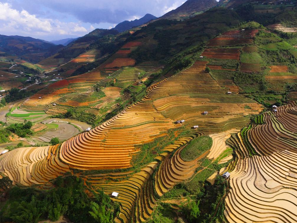 Image by Doan Tuan