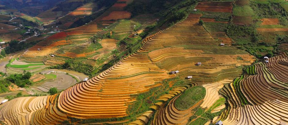Le Guide Ultime sur la législation des drones au Vietnam (Hanoi et Ho Chi Minh) | Drone Forum