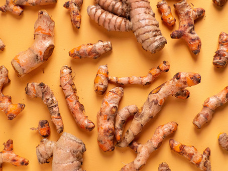 Wild Turmeric and its benefits