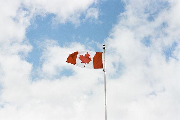 美國對移民的接受程度越來越低?加拿大再次放寬入境政策!