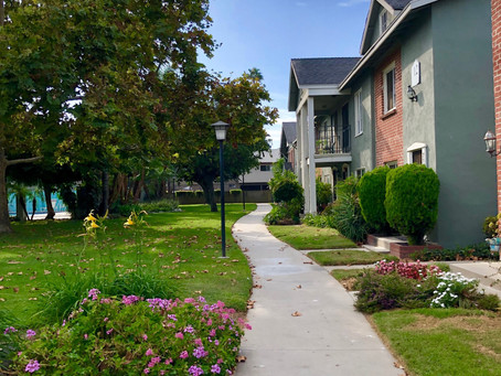 What is an HOA and how does it work?