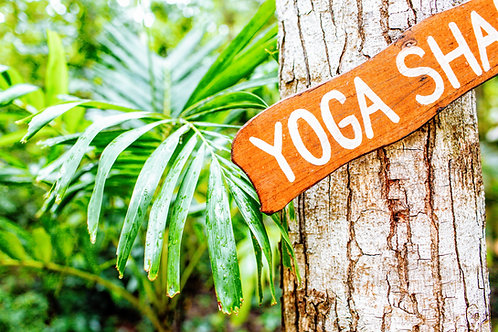 YOGA - Cours individuel