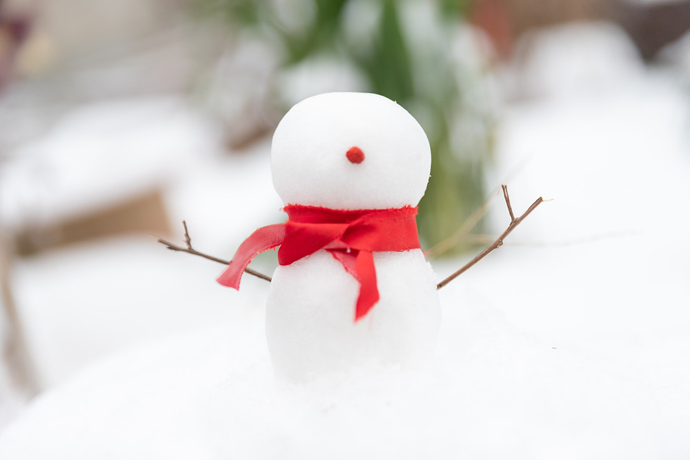 do-you-want-to-build-a-snowman