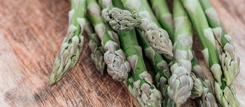Spotlight on Asparagus