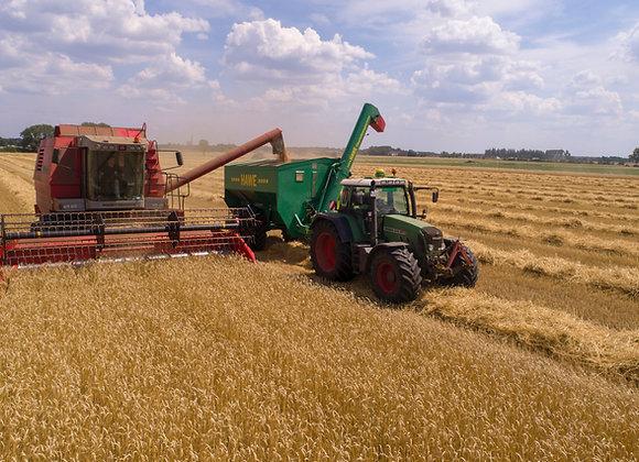 Агрохолдинг | КФХ |  сельское хозяйство | финансовая модель бизнес плана